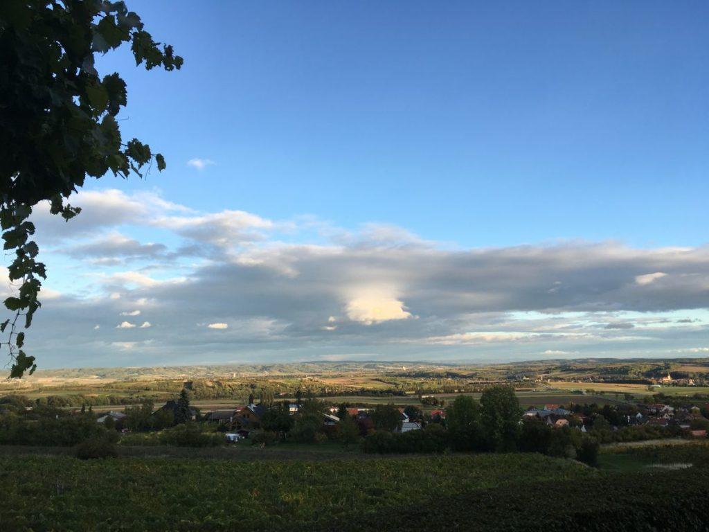 Eggenburg 2017 169 1024x768 - Auf den Spuren der Seekuh - Rückblick auf die Geomantietage in Eggenburg