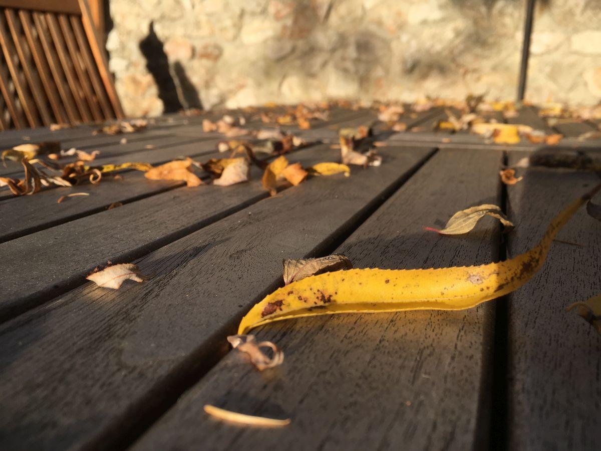 Oktober 2017 036 - Herbstgedanken beim Kofferpacken