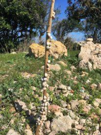 MaltaGozo Donnerstag 056 207x276 - Auf Göttinnenspuren in Malta & Gozo - Rückblick 2/3: die Tempel