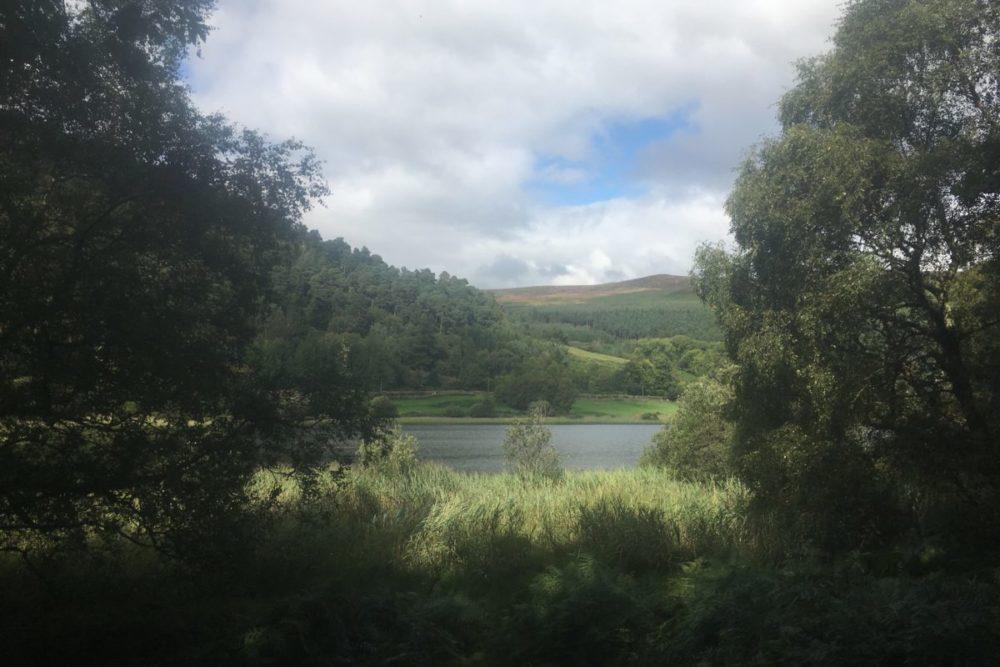 img 3589 1000x667 - Glendalough: Besuch im Tal der zwei Seen - mit dem Käsehobel in Irland