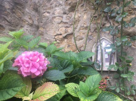 img 4321 445x333 - Chalice Well, eine bezaubernde Kapelle und ein magischer Garten - mit dem Käsehobel in England