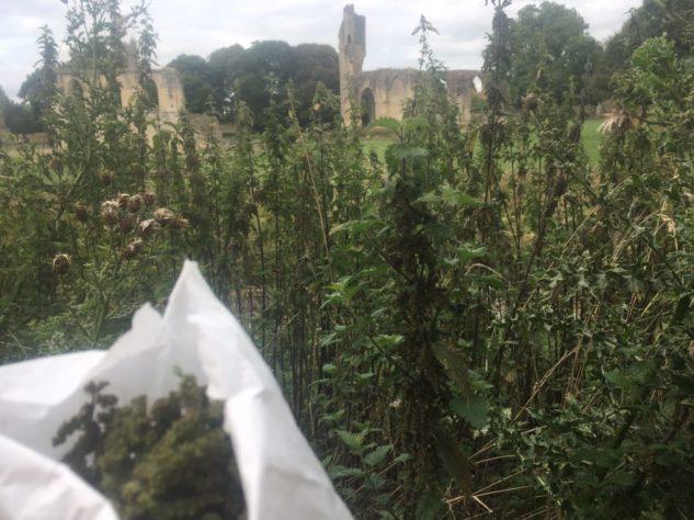 img 4407 633x474 - Chalice Well, eine bezaubernde Kapelle und ein magischer Garten - mit dem Käsehobel in England