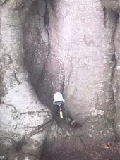 img 4458 170x227 - Chalice Well, eine bezaubernde Kapelle und ein magischer Garten - mit dem Käsehobel in England