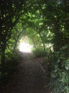 img 4556 235x313 - Chalice Well, eine bezaubernde Kapelle und ein magischer Garten - mit dem Käsehobel in England