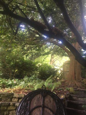 img 4558 340x454 - Chalice Well, eine bezaubernde Kapelle und ein magischer Garten - mit dem Käsehobel in England