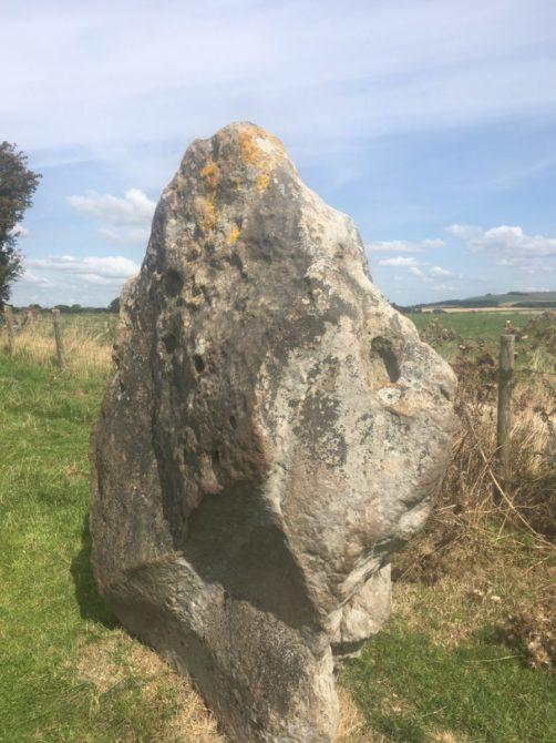 img 4680 502x670 - Steinkreise, Pubs und Kathedralen - mit dem Käsehobel in England