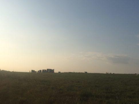 img 4889 485x363 - Stonehenge - mit dem Käsehobel in England
