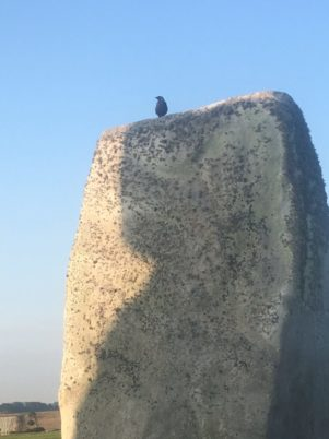 img 4908 301x402 - Stonehenge - mit dem Käsehobel in England