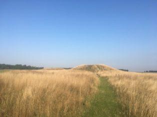 img 4998 314x235 - Stonehenge - mit dem Käsehobel in England