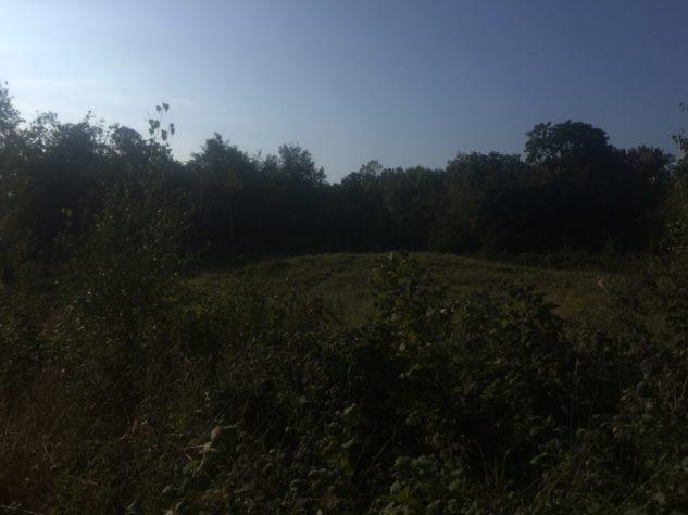img 5009 633x474 - Stonehenge - mit dem Käsehobel in England