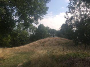 img 5034 314x235 - Stonehenge - mit dem Käsehobel in England