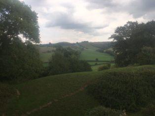 img 5090 314x235 - Maybe-Camelot und die 1.700jährige Eibe von Compton Dundon - mit dem Käsehobel in England