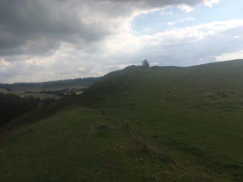 img 5095 474x355 - Maybe-Camelot und die 1.700jährige Eibe von Compton Dundon - mit dem Käsehobel in England