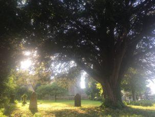 CamelotEngland2018 089