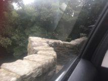 Dartmoor Anfahrt England2018 006