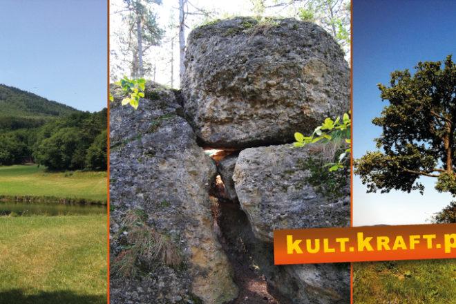 AltesGrab IKJ KKP 660x440 - Groisswiese & das alte Grab bei Hernstein - Kraftplatzwanderung
