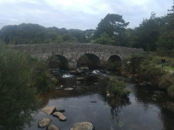 Dartmoor Daemmerfahrt England2018 046 350x262 - Dartmoorliebe, ein magischer Wald und Cream Tea - mit dem Käsehobel in England