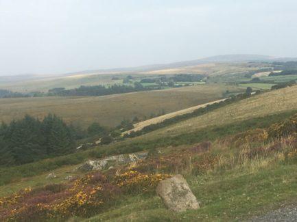Dartmoor Montag England2018 006