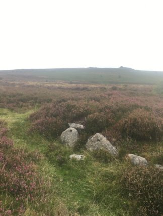 Dartmoor Montag England2018 038