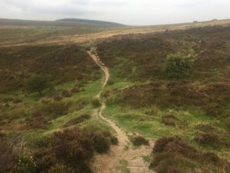 Dartmoor Montag England2018 050