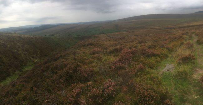 Dartmoor Montag England2018 054