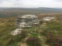 Dartmoor Montag England2018 075
