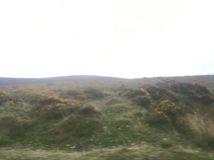 Dartmoor1 England2018 016