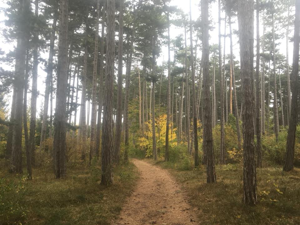 Langsamkeitzeit 4 - Herbstgedanken: Langsamkeitzeit