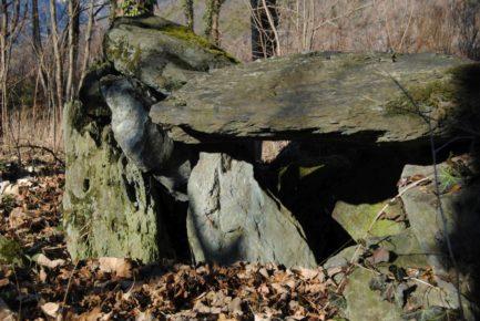 Dolmen Payerbach 029 433x290 - Der vergessene Dolmen von Payerbach