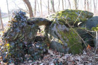Dolmen Payerbach 032 314x210 - Der vergessene Dolmen von Payerbach