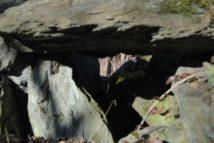 Dolmen Payerbach 036 214x143 - Der vergessene Dolmen von Payerbach