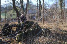 Dolmen Payerbach 042 214x143 - Der vergessene Dolmen von Payerbach