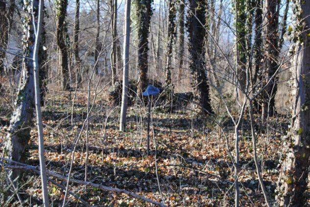 Dolmen Payerbach 053 633x424 - Der vergessene Dolmen von Payerbach