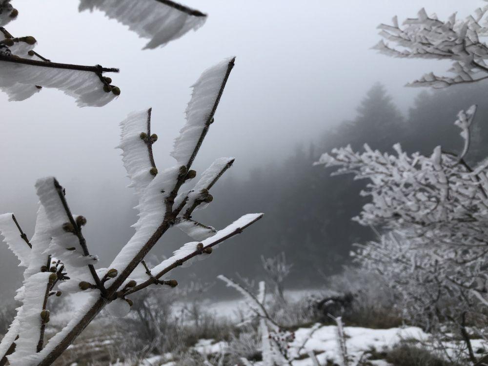 Dezember2020 103 - Wintersonnenwende & Weihnachten: Brauchtum & Symbole