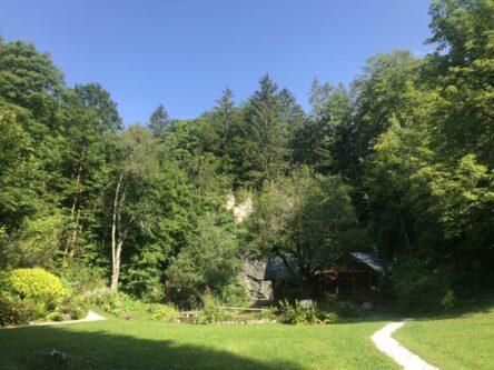 Alpengarten Bad Aussee 2021 002 444x333 - Der Ausseer Alpengarten