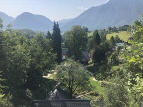Alpengarten Bad Aussee 2021 054 288x216 - Der Ausseer Alpengarten