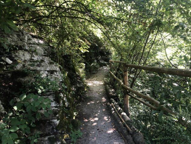 Alpengarten Bad Aussee 2021 066 633x475 - Der Ausseer Alpengarten